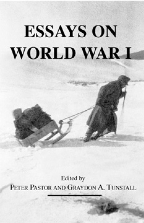 essay on world war 1 The war also drew the great economic powers of the world and they were assembled in two opposing sides, the allies and central powers writers at bestessayservicescom have excellent writing skills that will ensure you buy a well written essay such as this.